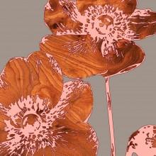 japanese anemone botanic Print