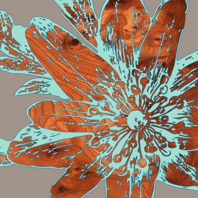 lily flower botanic Print
