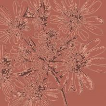 aster flower botanic print