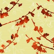 cherry blossom botanic Print