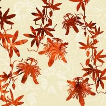 passion flower botanic Print