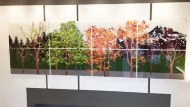 Covington hospital art installation