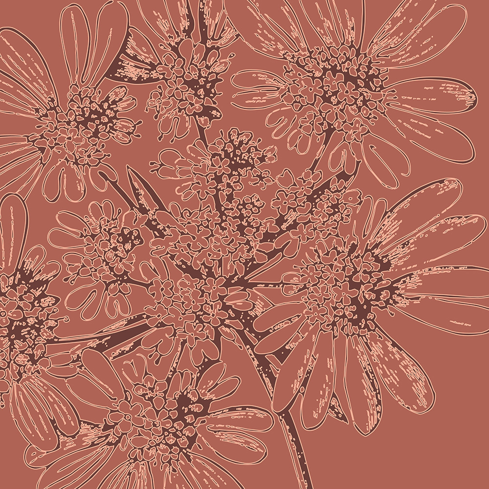 burgundy aster flowers botanical wall art Print