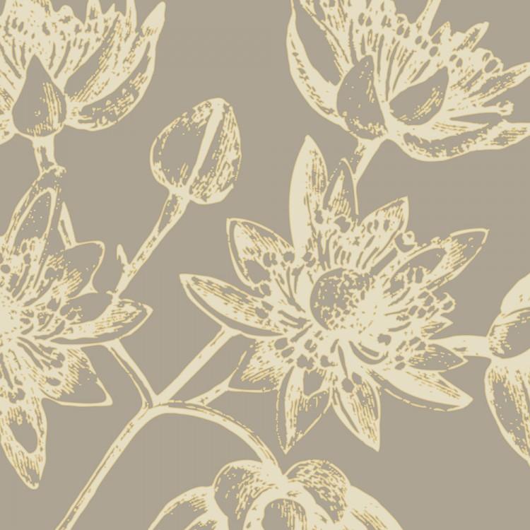 cream nigella flowers botanicals wall art Print