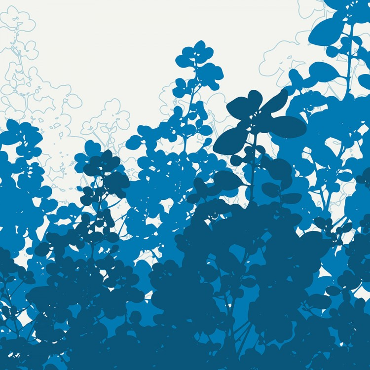 blue meadow flowers botanicals wall art Print